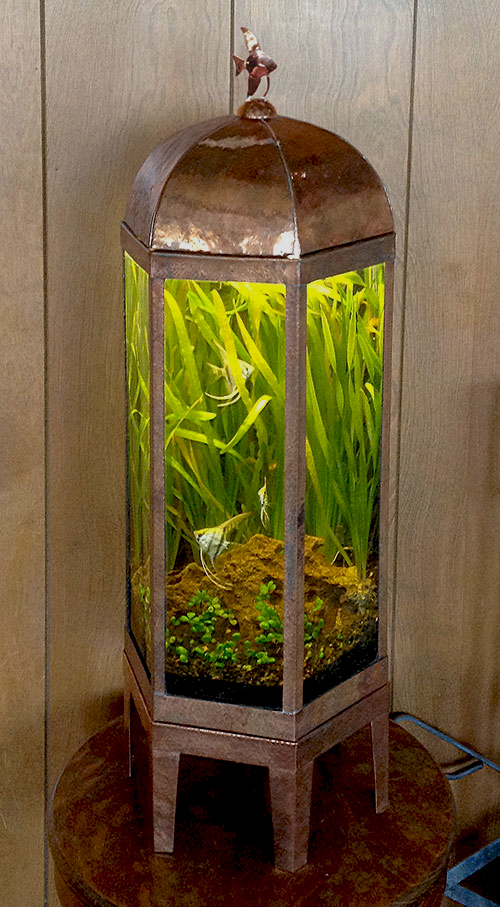 copper aquarium hexagonal hex